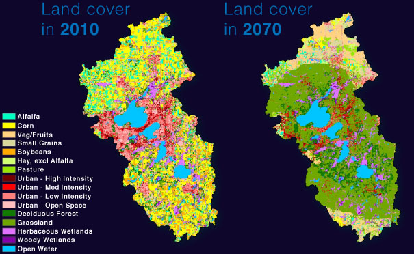 Land cover map for abandonment scenario