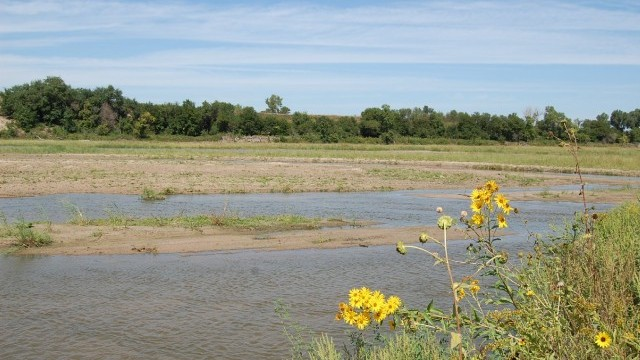 Reconstructing a River for Wildlife