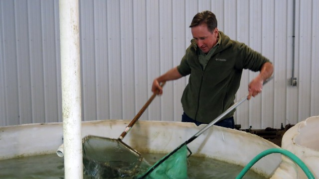 Fish Farmer Tom Machamer