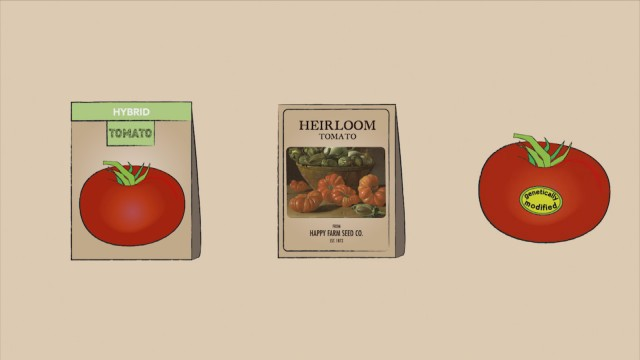 What is an Heirloom Tomato, Anyway?