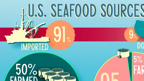By giving carnivorous farmed fish barley, yeast and soy can we get them to go vegetarian? Click on the infographic above to learn more.