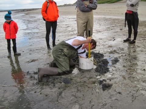 Kirk Lombard digging