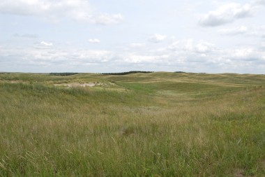 Today Nebraska's Sandhills are lush grasslands that support a robust ranching economy. (Photo by Ariana Brocious)