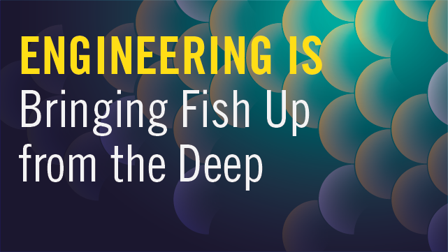 Engineering Is Bringing Fish Up from the Deep