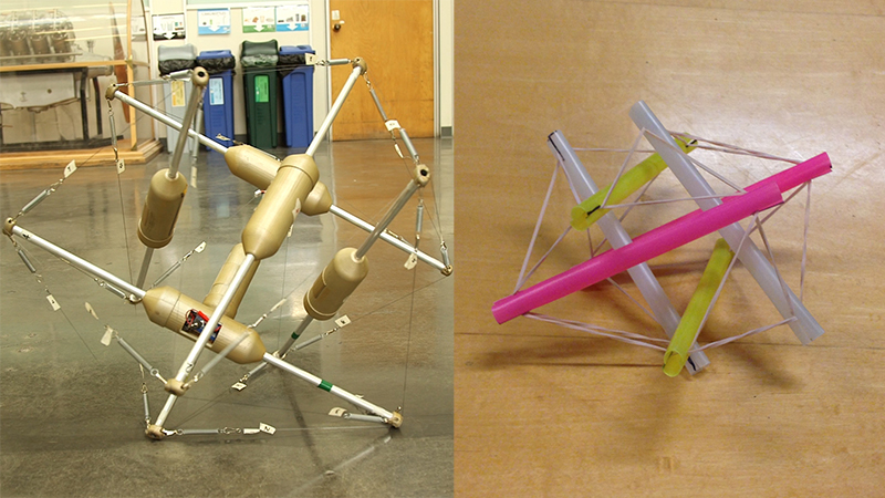 Tensegrity robot and model