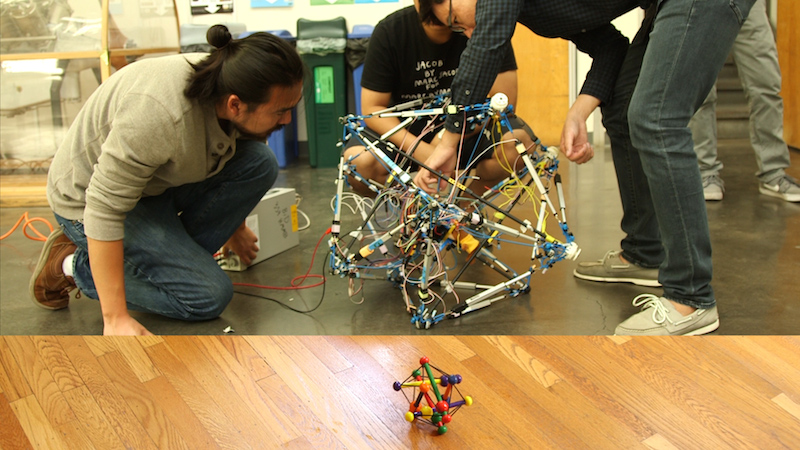 robot and tensegrity toy