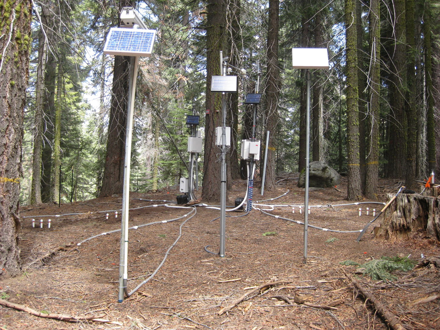 "The ""critical zone tree"" in UC Merced's Southern Sierra CZO has nearly 200 sensors."