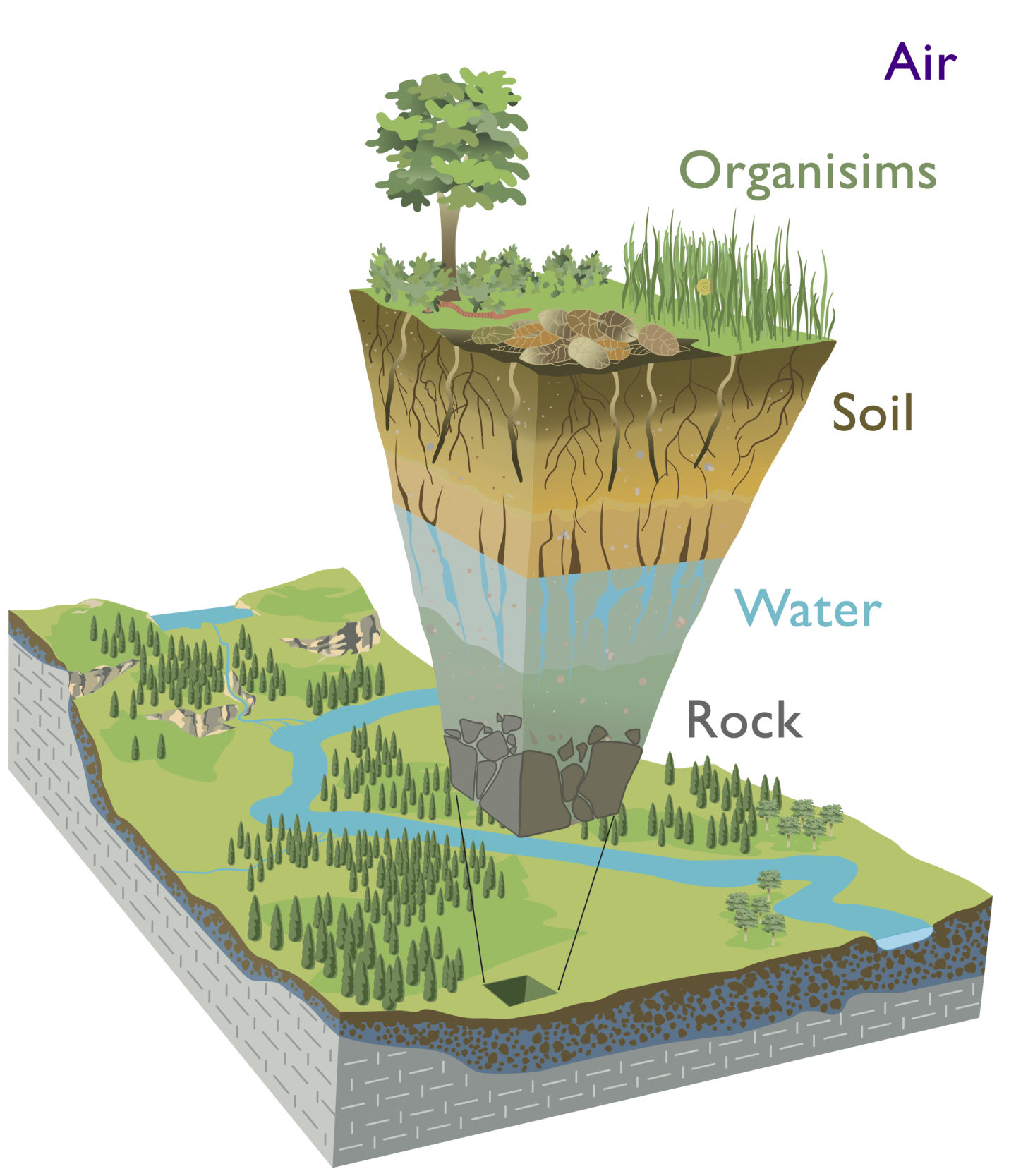 The critical zone is defined as the zone that is tectonically, geologically and biologically active across the Earth's surface.