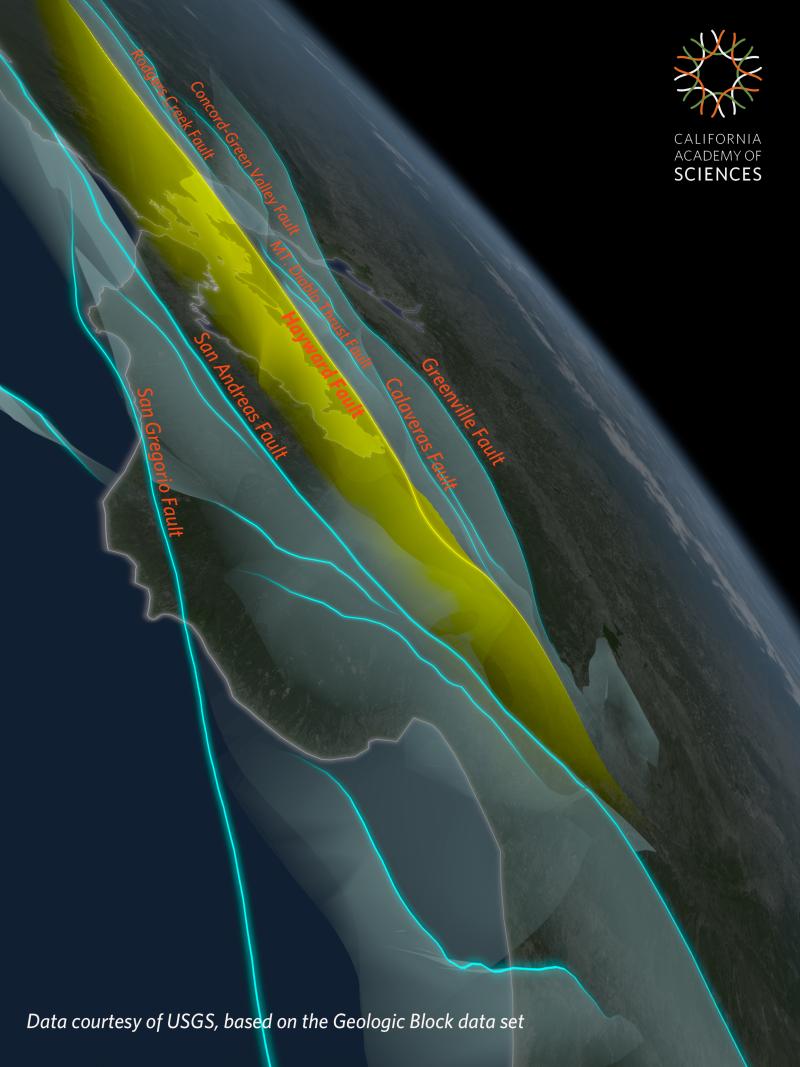 San Francisco Bay Area Earthquakes and Faults