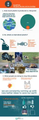 Student infographic about the plastic problem.