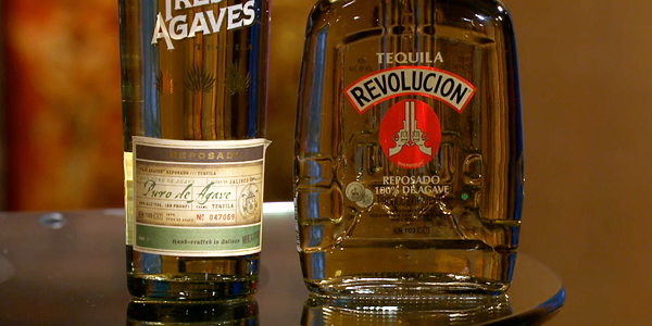 Tequila Tips: Check, Please! Bay Area