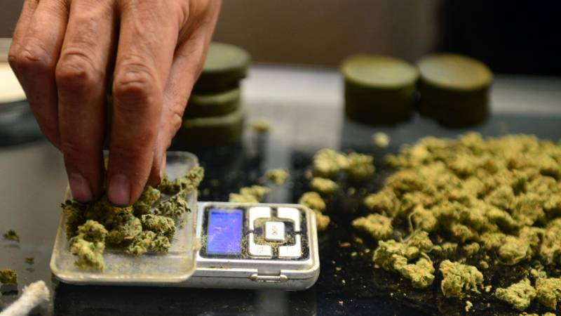 Election 2018: Bay Area to Vote on Cannabis Taxes
