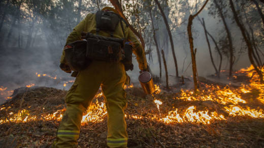 A firefighter uses a drip torch to set a backfire to protect houses in Adobe Canyon during the Nuns Fire on October 15, 2017 near Santa Rosa, California.