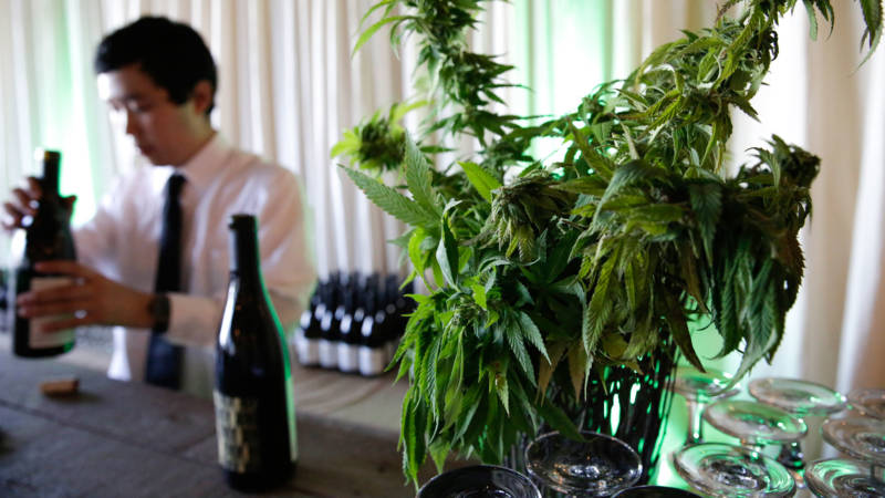 Forum on the Road: Is Weed Threatening the Wine Business in Napa