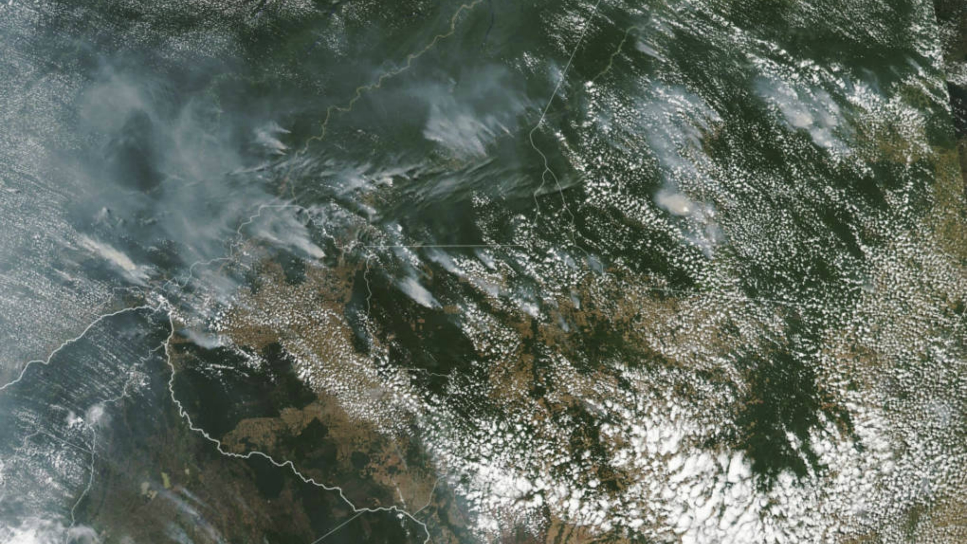 'Earth's Lungs' on Fire as Amazon Burns