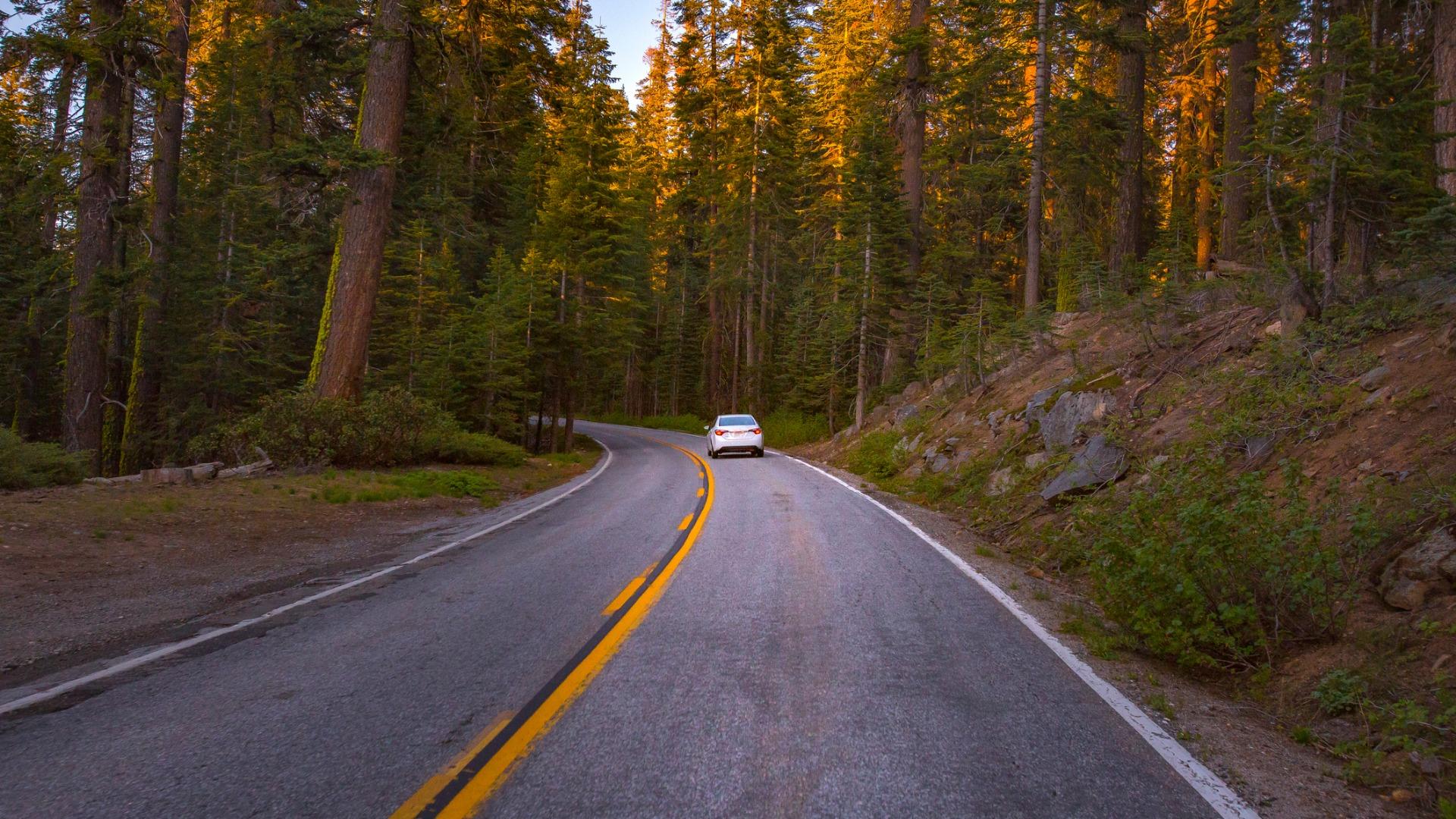 Road Trip: Discovering California