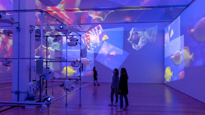 spectators (right) look at the projected images on the walls as emitted by projectors (left)