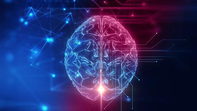 NOVA Wonders: Can We Build a Brain