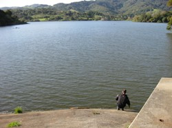 A deceptively full Stafford Lake reservoir in northern Marin County. Photo by David Gorn.