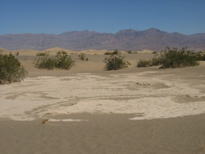 Looking across the dunes in Death Valley. Photo: Craig Miller