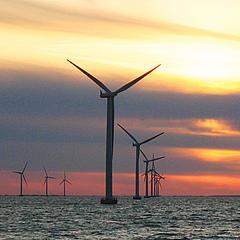 Wind turbines off Scottish coast. Photo: World Wildlife Fund