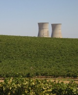 Cooling towers from the defunct Rancho Seco nuclear power plant rise above vineyards near Lodi. Photo: Craig Miller