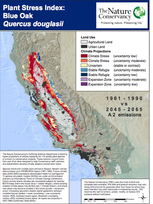 Projected changes in California Blue Oak habitat (Map: The Nature Conservancy)