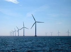The Nysted wind farm off Denmark. Image: Cape Wind Assoc.