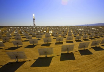 A thermal-solar array of the type planned for southern California. Photo: Brightsource Energy