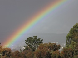 Rainbow following late spring rains in Vallejo. Photo: Craig Miller