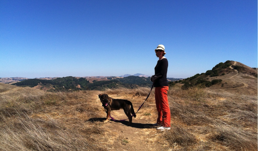 Permalink to Best Marin Hikes With Dogs