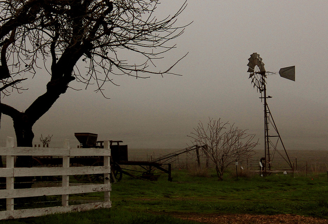 Rush Ranch is a 2,000-acre open space on the edge of Suisun Marsh. Photo: Neenabeena/Flickr