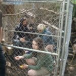 """Cramped quarters: Sophia Rose Vail, Dagmar-Weaver Madsen and Michael Bosman filming in a pigeon coop on the set of """"I Feel Stupid."""""""
