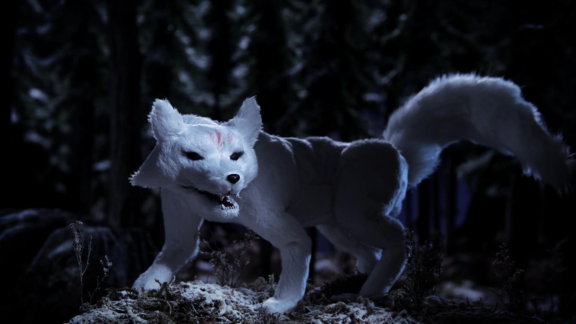 Cry of the Fox Still 4