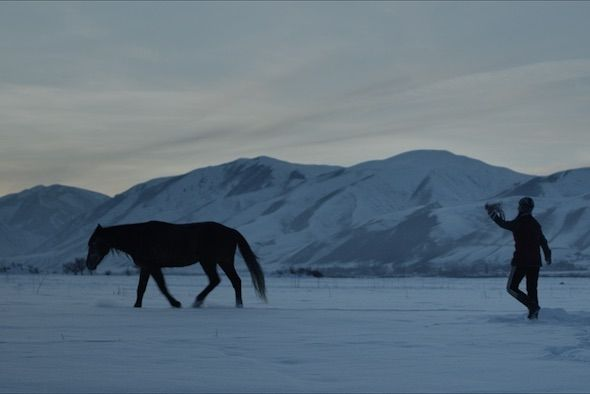 Chasing the horse away in Seide
